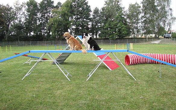 Hundesportplatz der FSG Medizin Hoyerswerda